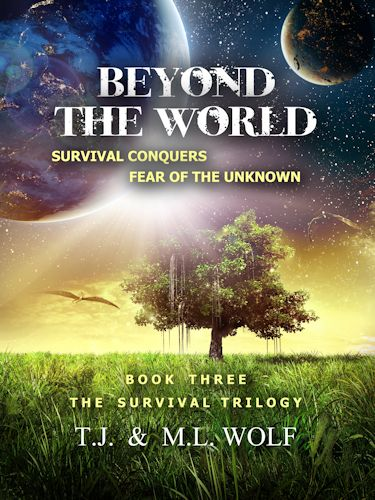 beyond-cover-website